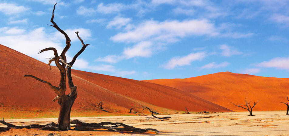the characteristics of the namib desert in namibia Due to the fact that the super-arid namib desert covers much of its area, it is also the second-least densely populated country in the world after mongolia the country is not completely covered by barren desert, but instead has five unique geographical areas: the namib desert, the central plateau, the great escarpment, the bushveld, and the.